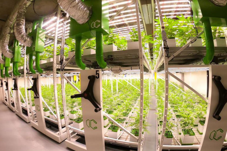 Warehouse Solutions For Your Cannabis Operation: Mobile Shelving & Racking Systems