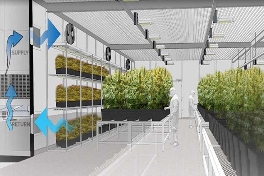 Warehouse Solutions For Your Cannabis Operation: Modular Offices